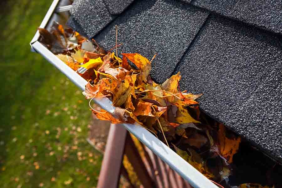 choked gutter leading to water leakages